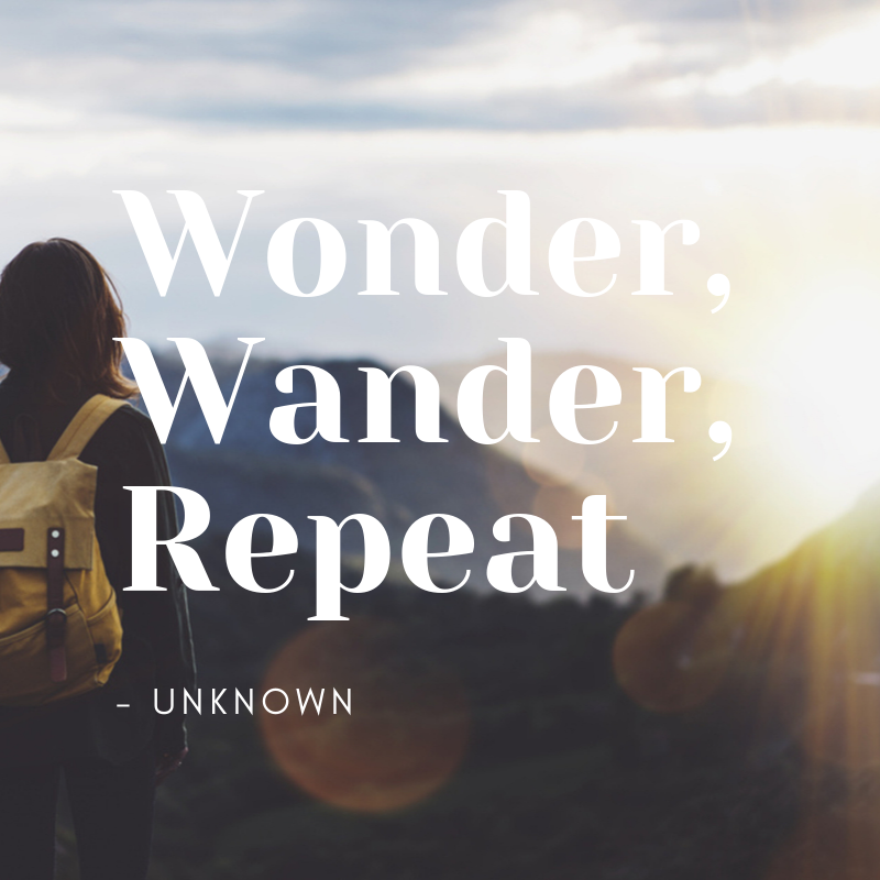 wonder, wander, repeat quote